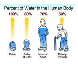 Why water is important for life essay